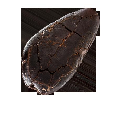 Hořká čokoláda Valrhona 66%
