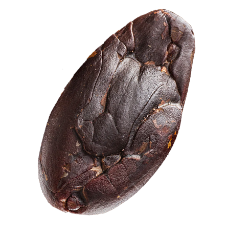 kakaové boby z Madagaskaru