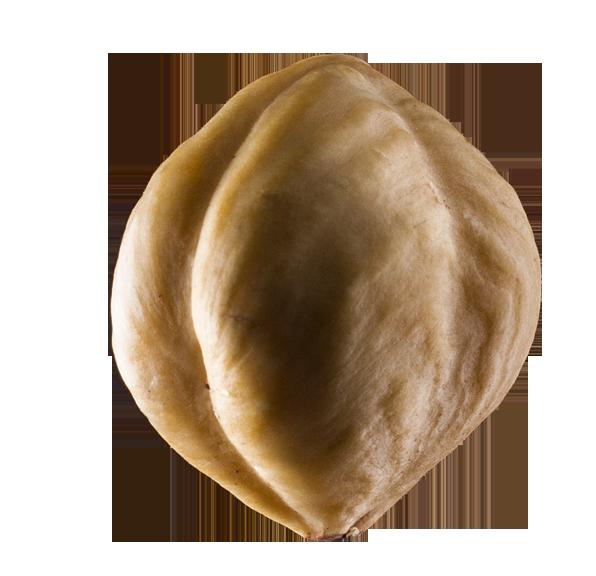 Lískové ořechy Piemonte
